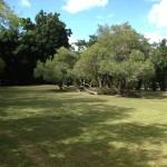 Casa de Campo Los Mangos 38, La Romana, Ofirenta
